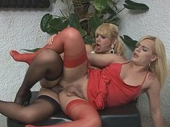 Heated ladyboy sliding for arse drilling exercises with her transsexual neighbour